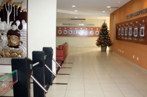 A emblemática árvore de Natal, símbolo-maior desse período